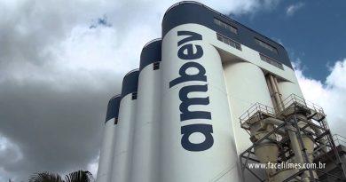 Cervejaria Ambev lança plataforma gratuita para ajudar empresas a economizarem energia elétrica