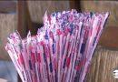 Lei que proíbe canudos de plástico em bares e restaurantes no estado de SP é regulamentada